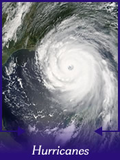Survived Hurricane Gustav