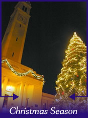 French Creole Christmas Candle Light Tour and Bonfire